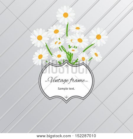 Card design with daisy flowers and vintage label. Vector illustration
