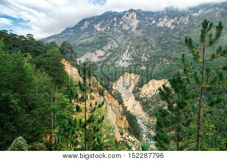 River Canyon, Green Forest Mountains, Nature Landscape
