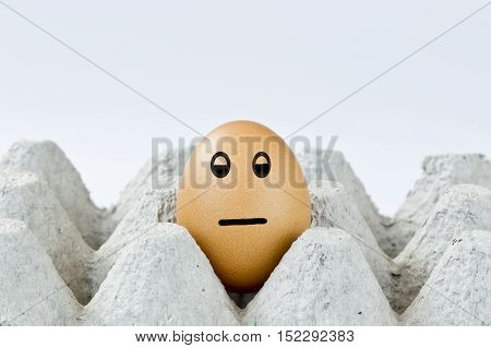 indifferent reaction of an egg in a grey box