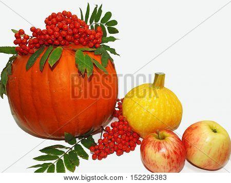 Autumn Vegetable Composition.