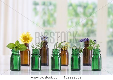 bottle of essential oil with selective fresh herbs and plants