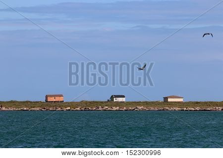 Beach houses on the water with birds overhead