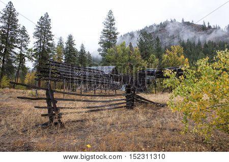 Run down barn and bush in Okanogan county in Washington near Winthrop.