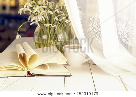 White crocus with open book on windowsill background.