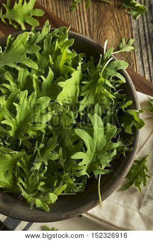 Raw Green Organic Baby Kale