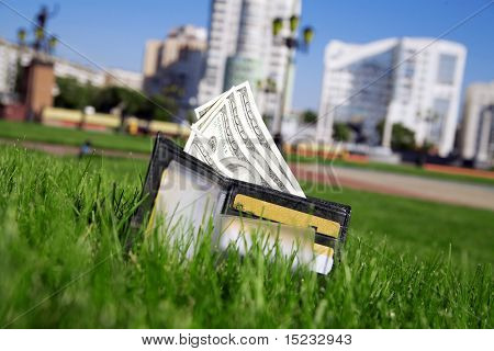 leather purse with a money on a green grass