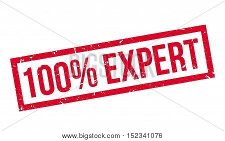 100 Percent Expert Rubber Stamp