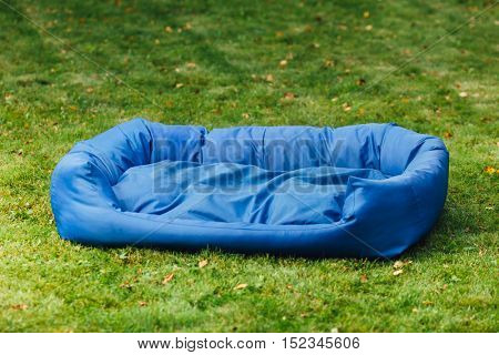 blue dog bed, green grass background