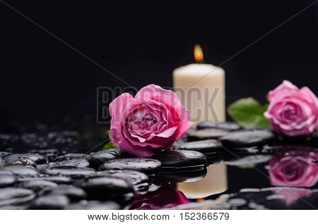 Still life with pink two rose with candle and therapy stones