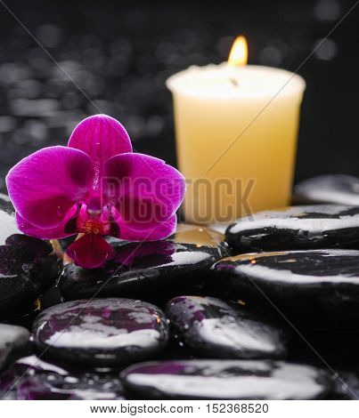 Macro of pink orchid with candle on wet black stones