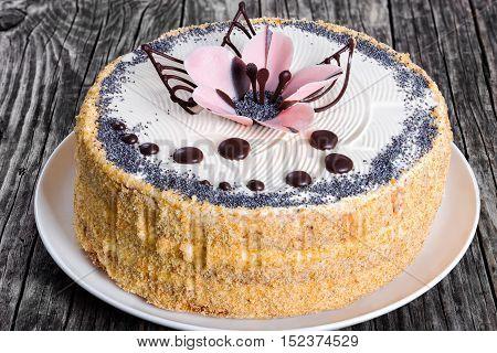 Luscious Poppy Seeds, Walnut And Raisins Sponge Cake