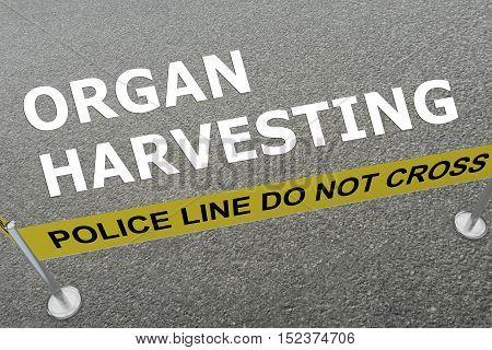 Organ Harvesting Concept