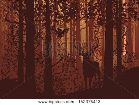 Autumn Forest Landscape And Deer