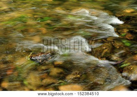 Small waves in the river Kamenice in Czech Switzerland