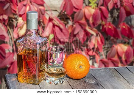 Bottle with a glass of tequila and the orange on the old table in autumn garden's