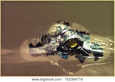 Gharial in the water, close up shot. Vintage painting, background illustration, beautiful picture, travel texture