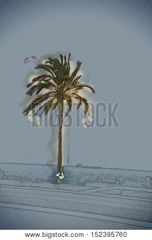 Palm trees along the coast in Palma de Mallorca at beautiful sunny day. Image of tropical vacation and sunny happiness. Filtered vintage photo. Modern painting, background illustration.