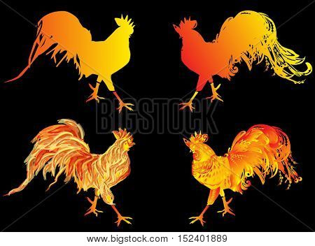 illustration with four red flame roosters as animal symbol of Chinese New year 2017 isolated on black background