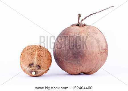 fresh coconut shell and  brown ripe coconut for coconut milk  on white background healthy fruit food isolated