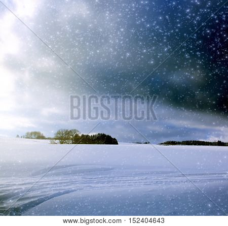 Winter landscape with snow and frosty trees in the winter scenery . Christmas winter background.