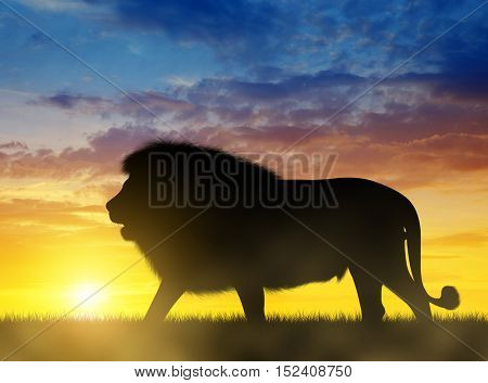 Silhouette of a Lion at sunset