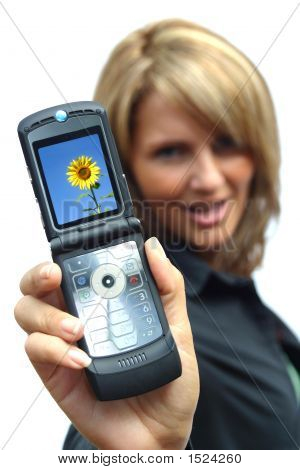 A Beautiful Woman With Phone - Sunflower Display