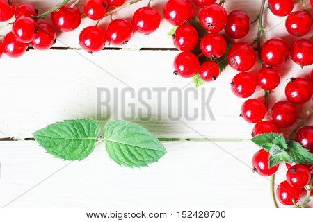 Fresh berries on a wooden branch against white background