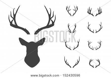 Deer s head and antlers set. Design elements of deer. Vector EPS8 illustration.
