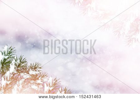 Winter landscape. Snow covered trees. abstract background
