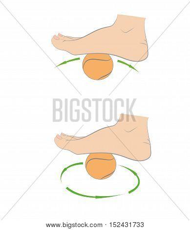 Foot massage tennis ball. medical advice. vector illustration.