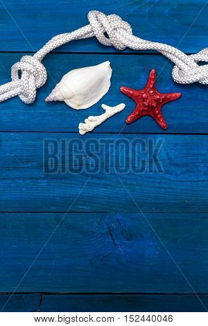 flat lay: seashells and rope on blue boards copyspace