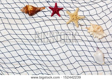 Marine Network and shells on white boards flat lay