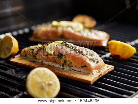 cedar plank salmon with lemon and rosemary on grill