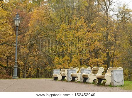 Several benches stand in a row.They are designed for visitors to relax.