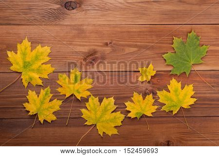 Maple leaves on the wooden background .