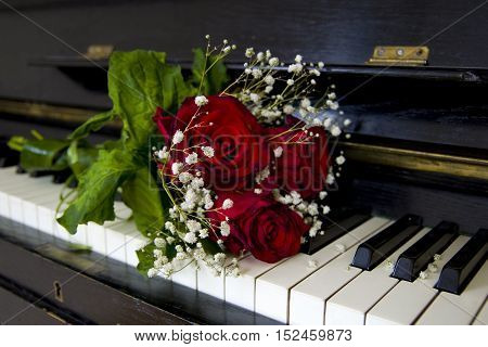 Red rose on the piano flaps - greeting card
