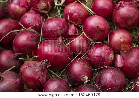 Red onion on hay. Background and texture.