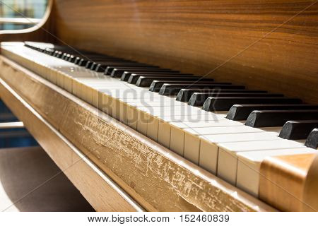 Piano Keys White Black Wood Grain Closeup Detail Warm Relax Empty Afternoon Sunlight Bright Music