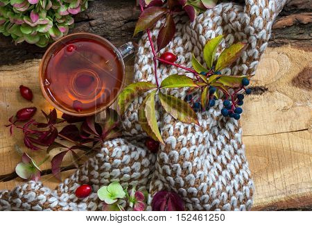 Hot Tea From Dog Rose And Autumn Leaves,hydrangea With Scarf  On The Vintage Wood Background .