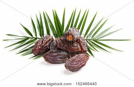 Some fruit of date palm and green leaves isolated on white background.