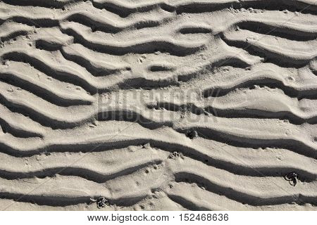 Structure in the sand of Wadden Sea at low tide