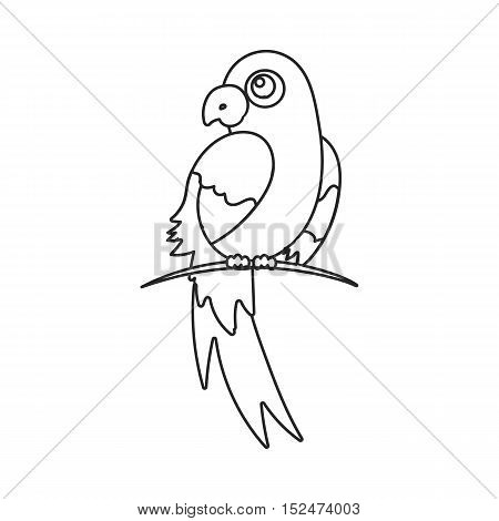 Parrot icon outline. Singe animal icon from the big animals outline