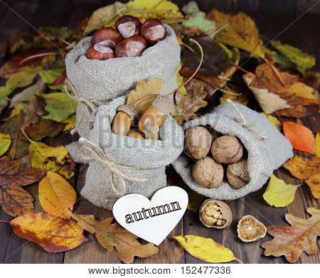 acorns, chestnuts and getsky nuts in bags against the background of autumn leaves with heart with an inscription  autumn