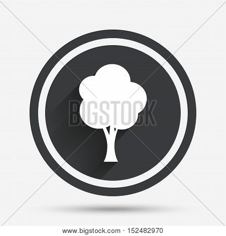 Tree sign icon. Forest symbol. Circle flat button with shadow and border. Vector