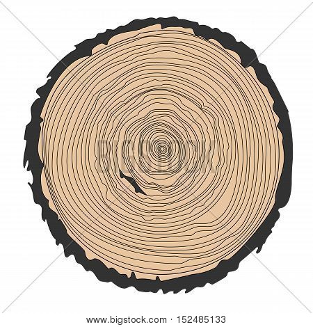 Conceptual background with tree-rings. Ring illustration isolated on white. Vector graphics eps10.