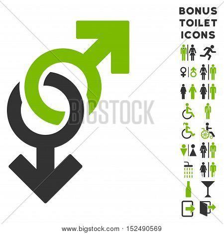 Gay Symbol icon and bonus man and female toilet symbols. Vector illustration style is flat iconic bicolor symbols, eco green and gray colors, white background.