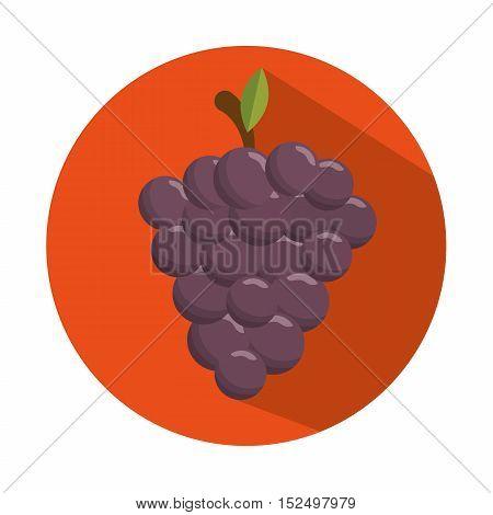 tasty grape harvest juicy design con vector illustration eps 10
