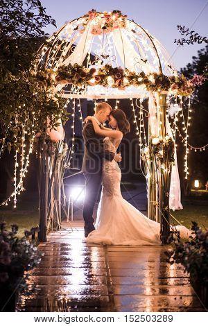 Side view of elegant couple embracing in illuminated gazebo at night