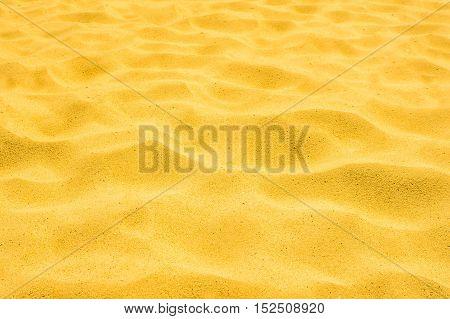 gold sand of a beach in the summer clean granular