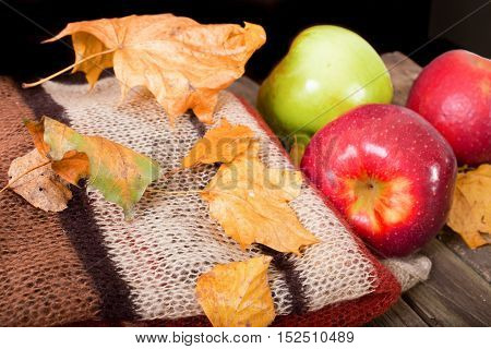 Composition from a warm scarf apples and autumn leaves. On an old table the woolen scarf and apples lies. The yellow whithered autumn leaves are scattered
